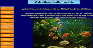 malawifreunde-delitzsch.de