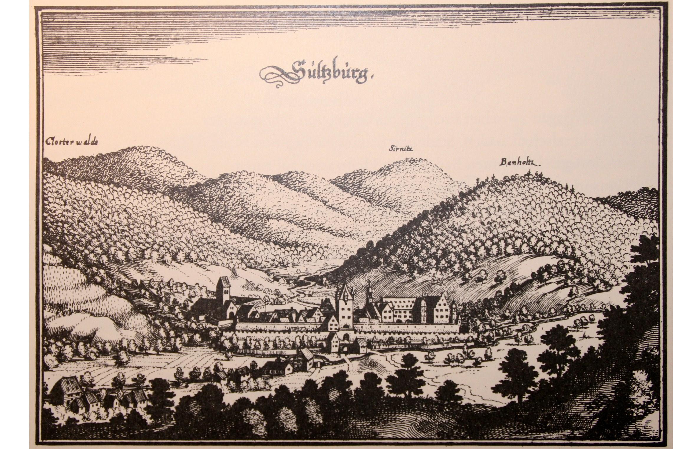Bildergebnis für sulzburg historisch