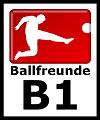 Ballfreunde B Junioren