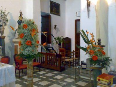 Baobab plantas y decoraci n granada iglesias for Granada interiorismo y decoracion