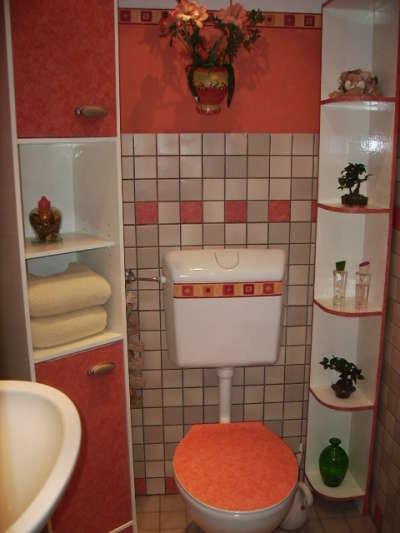 hier dreht sich alles zum thema basteln und ideen f r faschingskost me g ste wc neu gestaltet. Black Bedroom Furniture Sets. Home Design Ideas