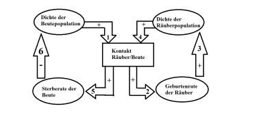 city hospitals sunderland nhs foundation trust together with receptor potential moreover la suite de fibonacci likewise dww graph additionally minnesota. on population