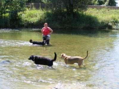 Gabi mit Spencer und Lilli im Wasser