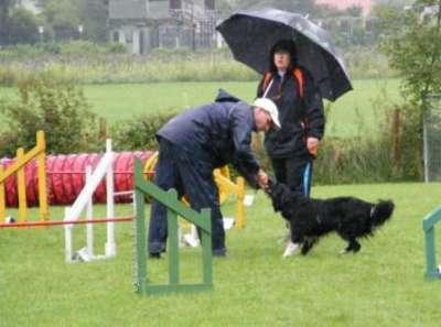 Cozmo mit Herrli Sascha im Regen