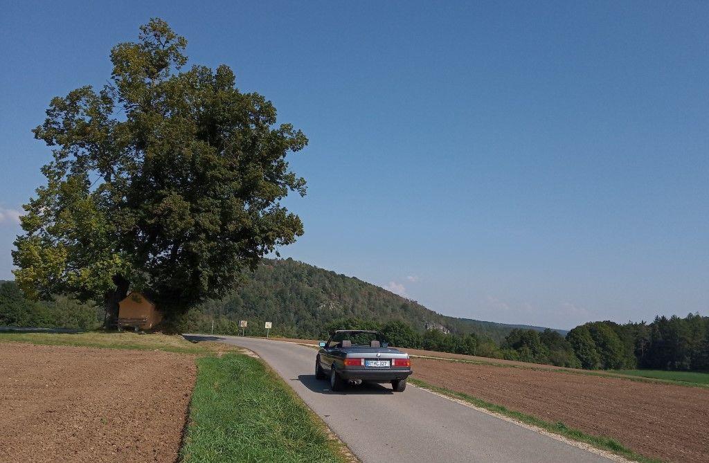 [Bild: Oak-Cab-F%20(Foren).jpg]