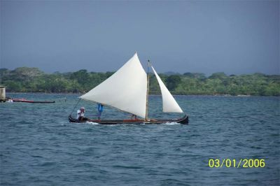 Urmor - canoes