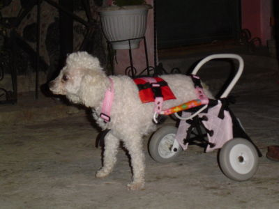 Discapacitado en silla de ruedas - 2 part 4