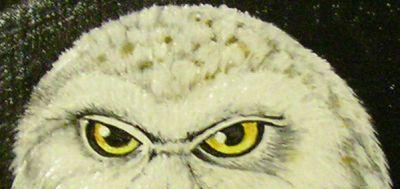 Hangemalte Schützenscheiben, Ehrenscheiben, Gemälde, Tiere, Tierportrait, Tierportraitist, Maler, Künstler, Tiermaler, Painter, Carp, Karpfen, Indianer, Waffen, Vorderlader, Gewehr, Pistole, Schwarzpulver, Schützen, Hunde, Portrait, Painting, Airbrush, Vögel, T-shirt, Animalpainter, Karpfenangeln, Welsfischen, Wels, Carphunter, Catch, Release, Fischmotiv, Karpfenmotiv, Waller, Wallerfishing, Catfish, Forelle, Hecht, Zander, Fischen, Fischer, Angler, Großkaliber, Sportschützen, Spiegler, Spiegelkarpfen, Schuppi, Schuppenkarpfen, Lederkarpfen, Zeiler, Zeilkarpfen