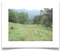 Camino rumbo a la Sierra