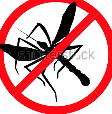 شركة رش الحشرات فى جدة