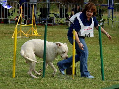 club canin 97460