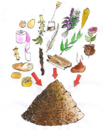 Abono organico zona verde ventajas del compostaje - Abono organico para plantas ...