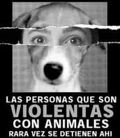 SER VIOLENTO CON UN ANIMAL ES SER UN COBARDEY UN MALTRATADOR EN POTENCIA