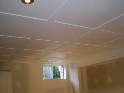 Construction s g plafond suspendu for Solde decoration interieur