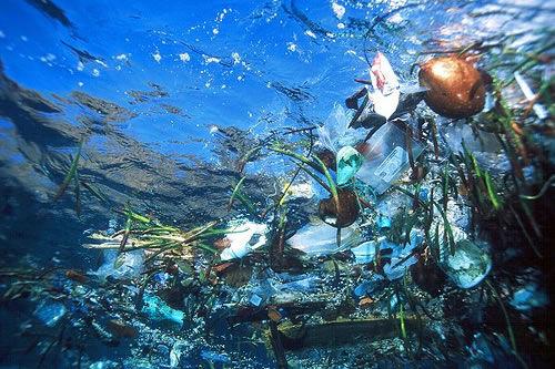 La isla de la basura