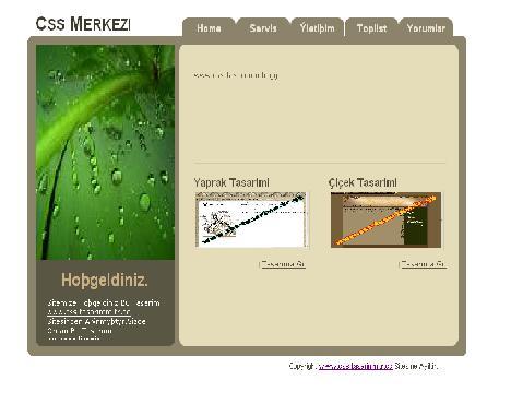 Yaprak Tasarımı Sitesi Tasarımı