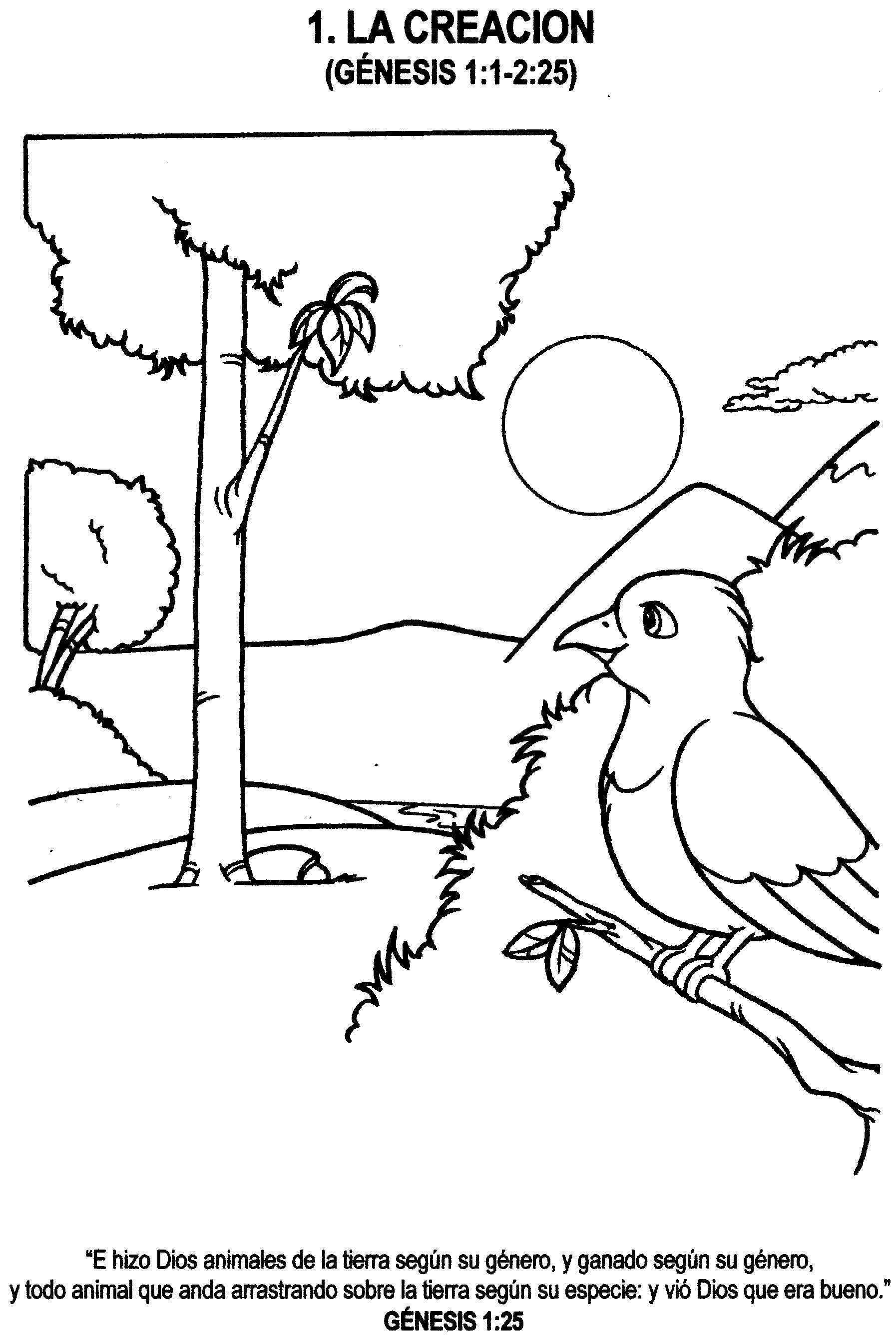 Hermosa Creación Para Colorear Páginas Día 2 Imagen - Dibujos Para ...