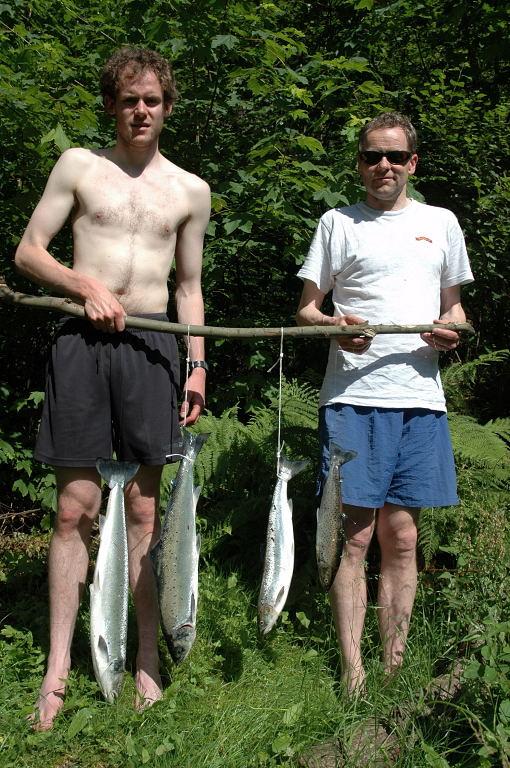 Ole og Inge Sandven med ein fin dagsfangst på 3 tertar og 1 sjøaure tatt 8.juli. Foto: Arne R Sandven