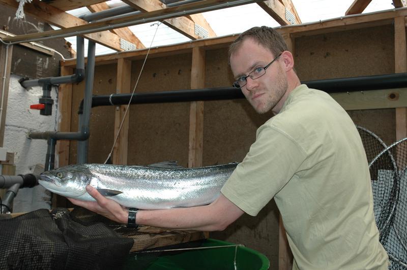 Ole R Sandven med ein flott holaks på 4,3kg, teke 3.juli i Revebrua. Laksen vart tatt inn som stamfisk! Foto: Arne R Sandven