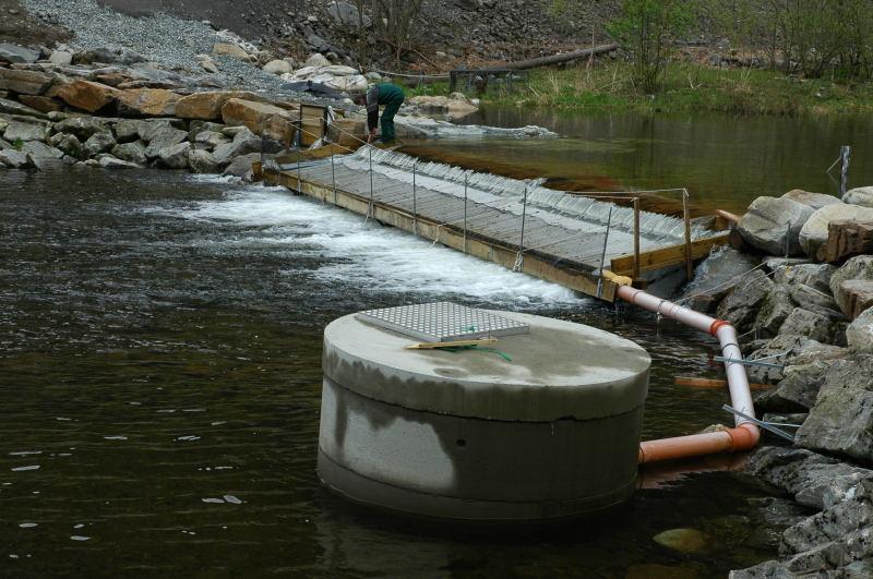 Smoltfella i resttilsiget til elva er med på å kartlegge smoltproduksjonen. Foto: Arne R Sandven