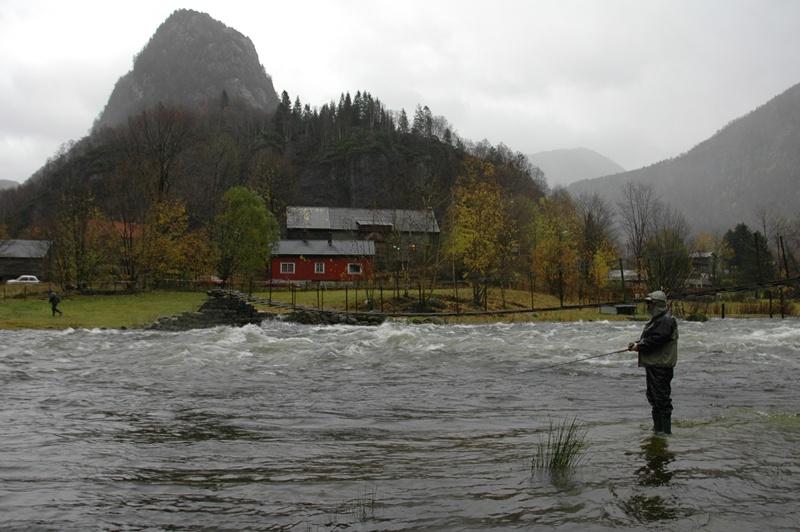 Stamfiske om hausten på stor elv i Revebrua. Foto: Arne R Sandven
