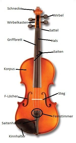 Geigenaufbau