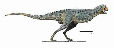 Dinosfer Carnotauro