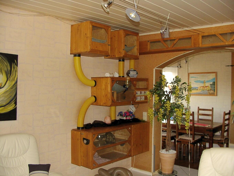 die domo ferretis k fig beispiel. Black Bedroom Furniture Sets. Home Design Ideas
