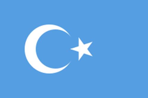 dou turkistan bayrağı