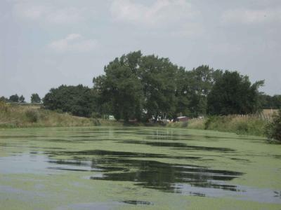 ganz Typisch für den von uns durchfahrenen Traveabschnitt diese Grüne Trave, hier bei Barnitz,