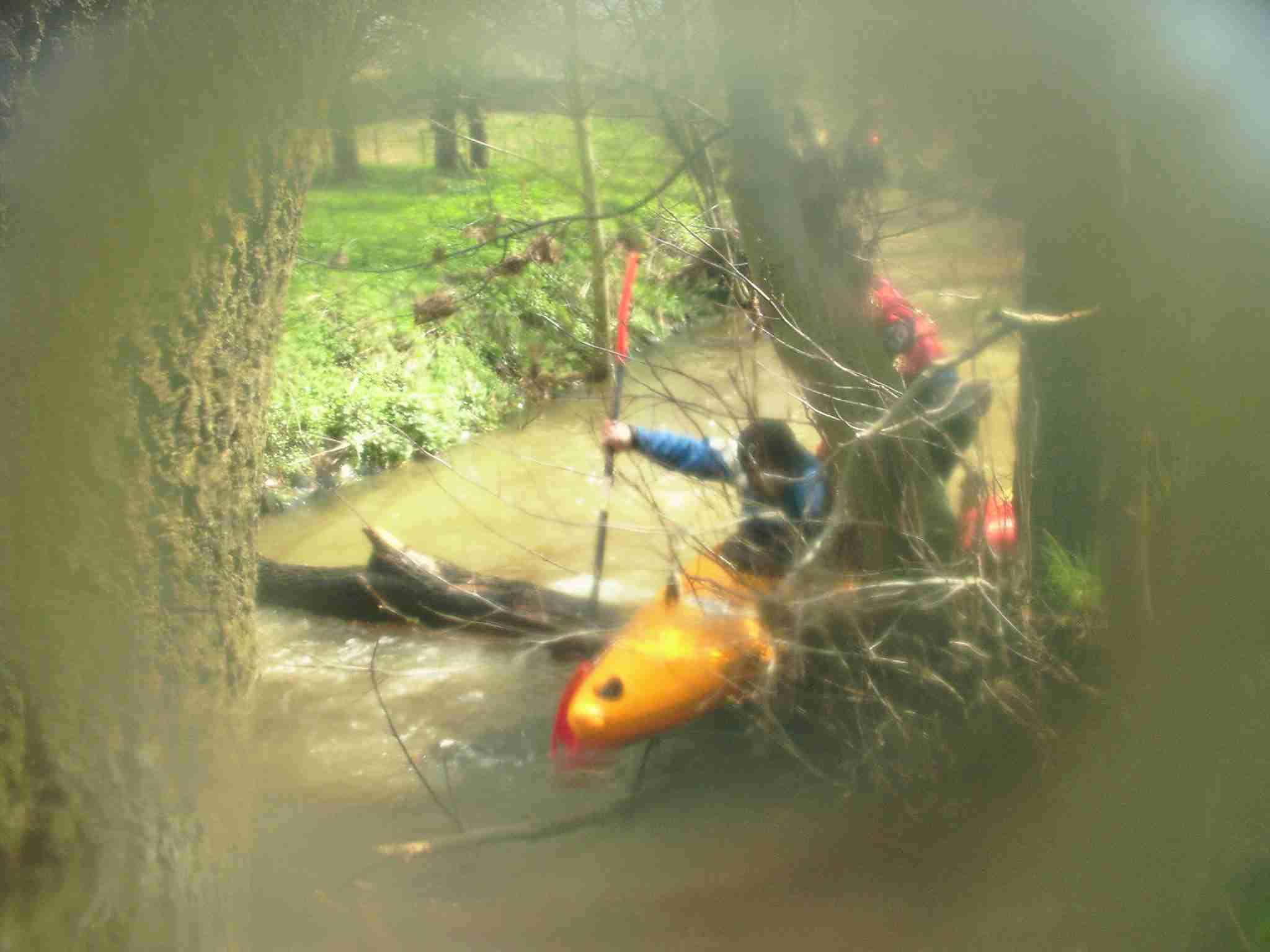 Mit viel Anlauf und Hilfe kam Gerd prima über diesen Baum