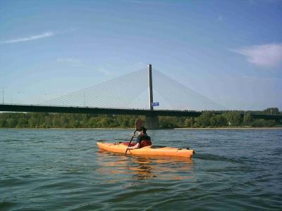 Nordbrücke auch Rheinharfe genannt