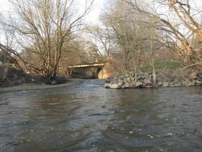 Mündung des Wisserbaches