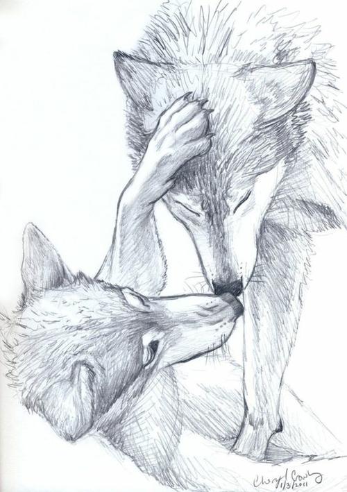 Einfach Zeichnen Bild Zwei Spielende Wolfe