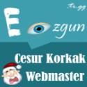 https://img.webme.com/pic/e/eozgun/eozgun125.jpg