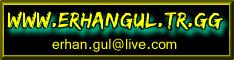 www.erhangul.tr.gg aynı boyutta bir banner hazırlayın