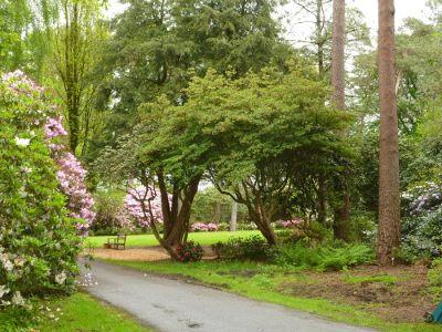 ferienhaus kunstwerk kaiser rhododendronpark hobbie westerstede. Black Bedroom Furniture Sets. Home Design Ideas