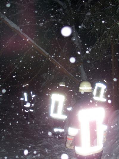 Schneebruch auf vielen Straßen führte zu zahlreichen Einsätzen