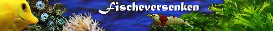 Fischeversenken - Schorschiii's Aquaristikseite