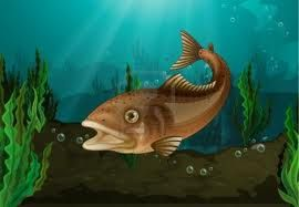 Fishcss fish css for Pez cuchillo cristal