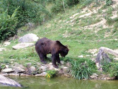 Tierpark Langenberg