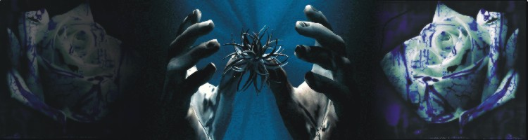 dłonie 3