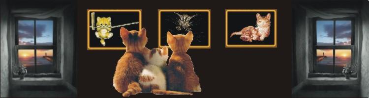 koty trzy
