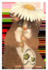 chomiki hamsters