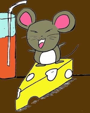 myszy mouses