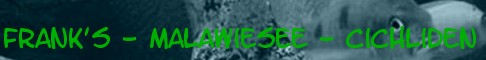 https://img.webme.com/pic/f/franks-aquaristik/banner1.jpg