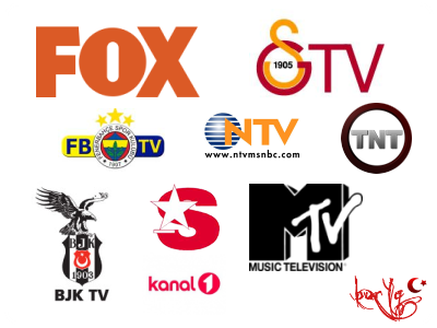 Televisión porno en línea