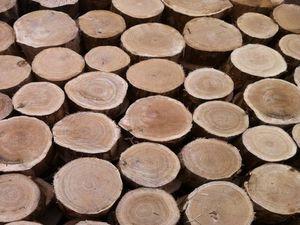 bruk drewniany gdańsk
