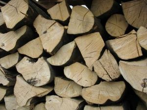 gdańsk drewno kominkowe