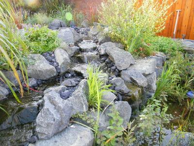 Der Gartencop - Teichbau Und Bachlauf